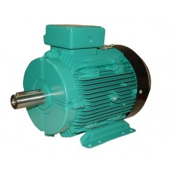Motor 60Hp 380/660Vac 3000Rpm 50Hz IEC IE2 B3