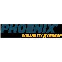 Phoenix Lighting